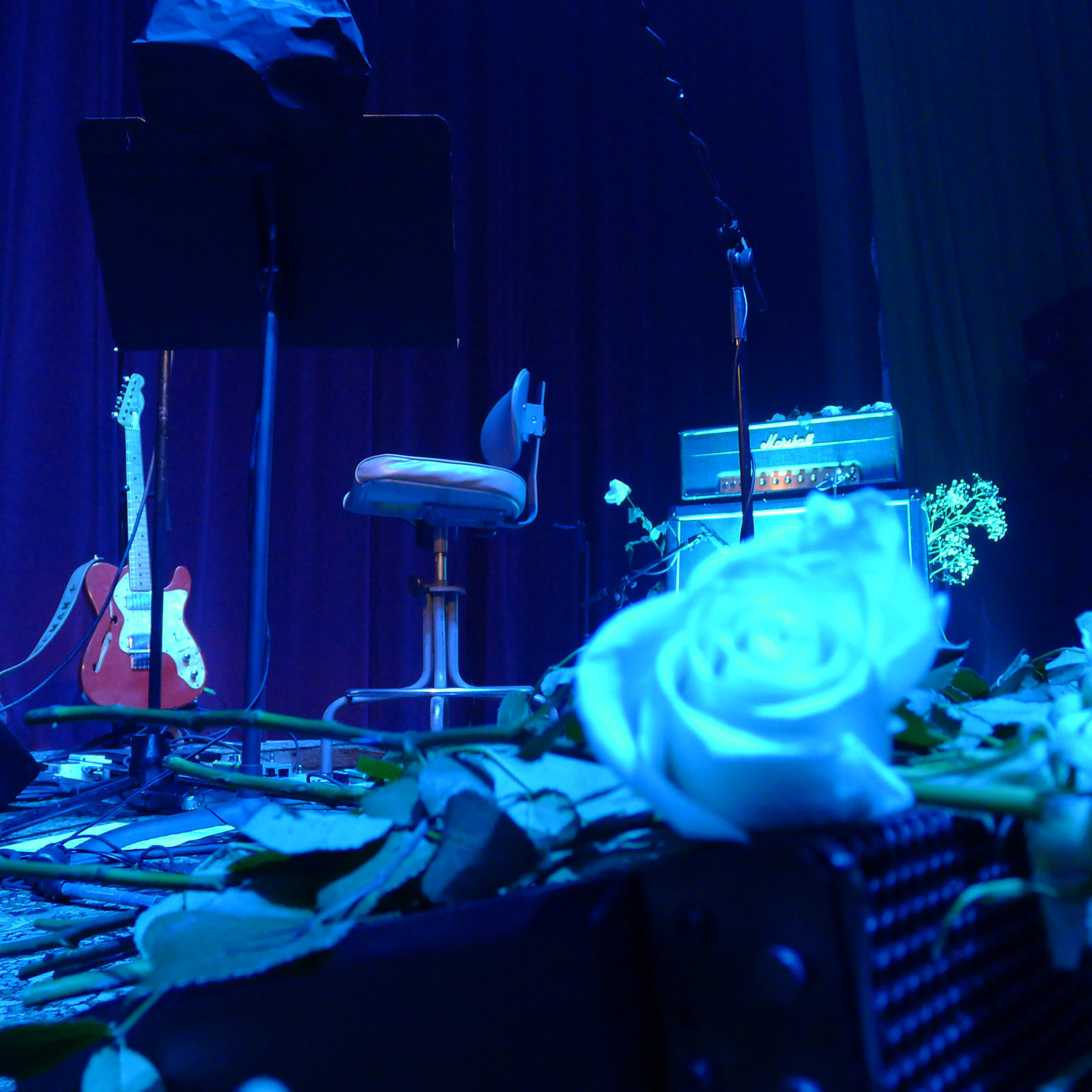 Spiritualized - United Artists Theater; Los Angeles, CA (6)
