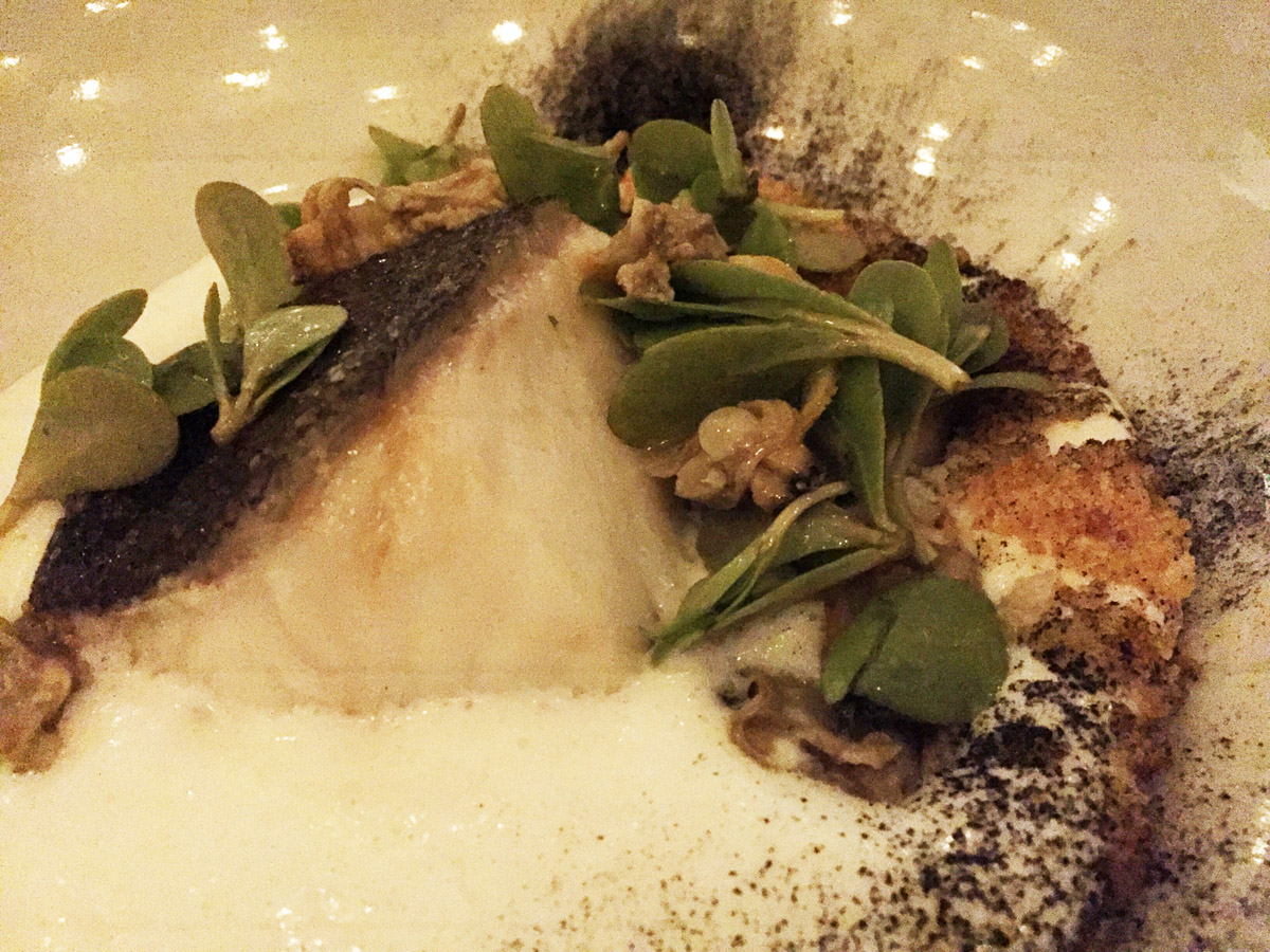 Cod·Burnt Onion·Clams·Purslane