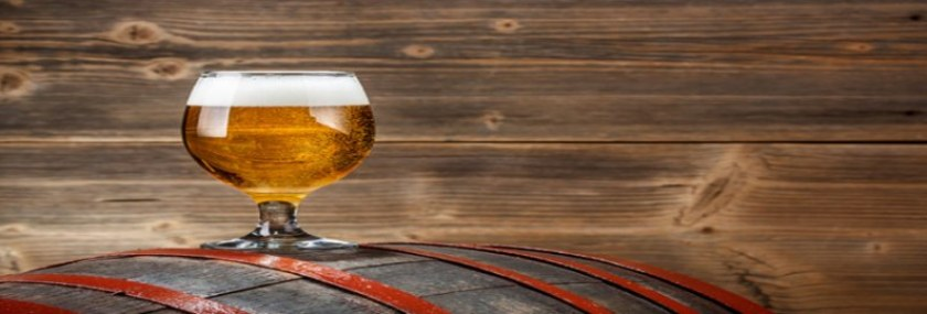 The Top 10 Beers I Consumed In 2016