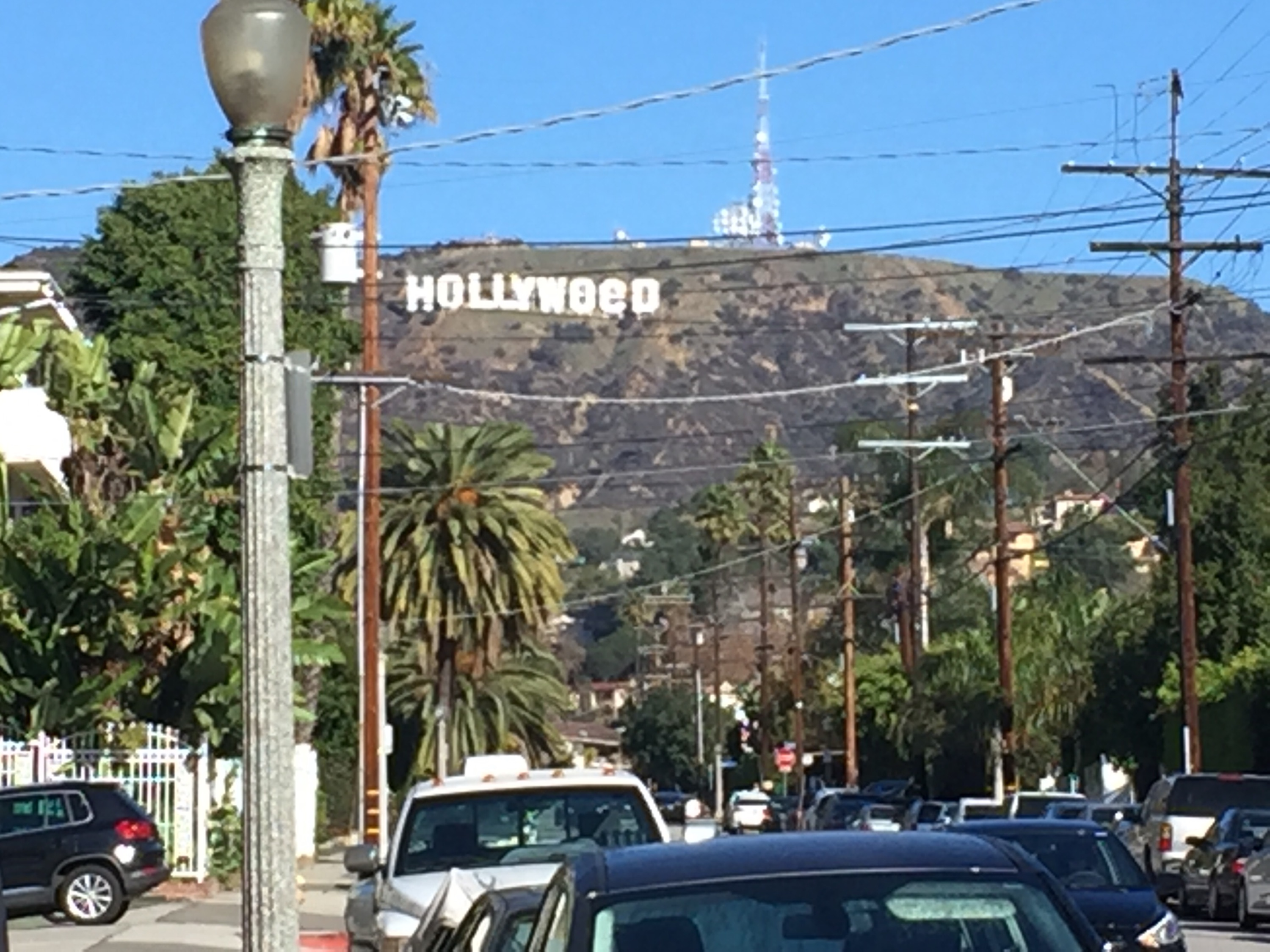 HOLLYWeed Sign